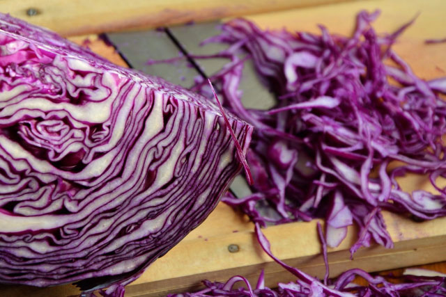 Red Cabbage Pregnancy Test