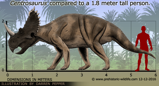 Image result for centrosaurus