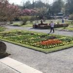Botanischer_Garten_76