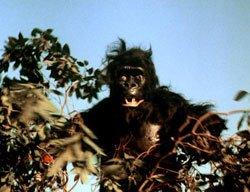 El monstruo en acci贸n. Es una especie de humo negro que toma forma de mandril estr谩bico