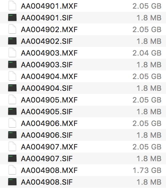Canon XF C300 XF305 Folders & Files Explained | Premiere Pro
