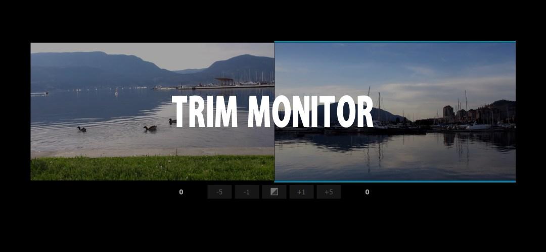 Visualizzare e modificare un taglio: Trim Monitor