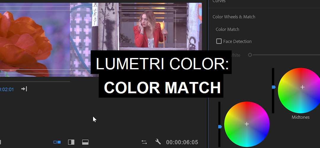 Lumetri Color: Color Match