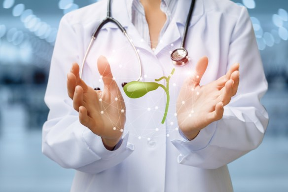 Gallbladder Surgery - Premier Surgical