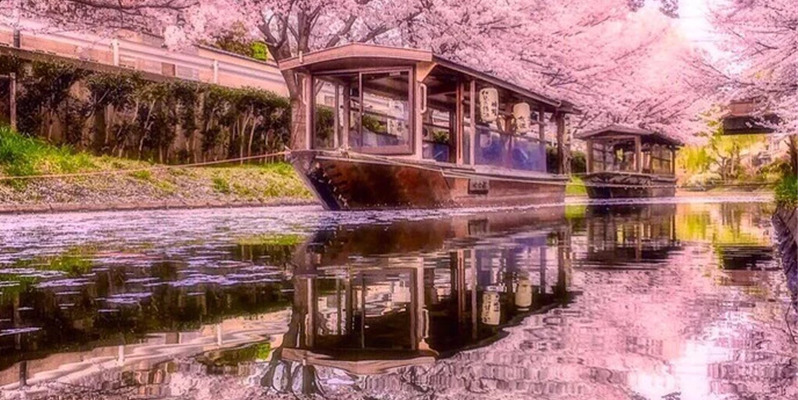 Sotto i ciliegi in fiore. Impressioni di viaggio in Oriente di Giovanni Comisso