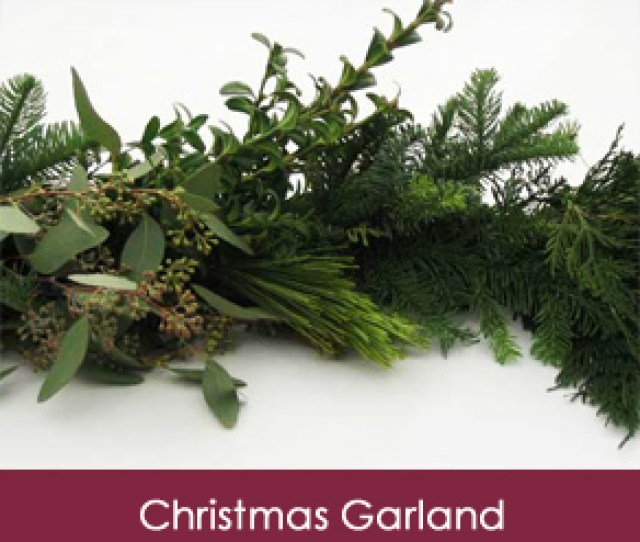 You Can Depend On Our Trees Wreaths And Garlands To Be Of The Highest Quality And Beauty That Come From The Woods Of The Northern Midwest