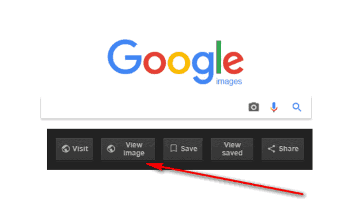 bring back View Image feature in Google
