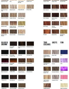 Hothair and natural image wigs colour chart also hair charts rh premiumwigs