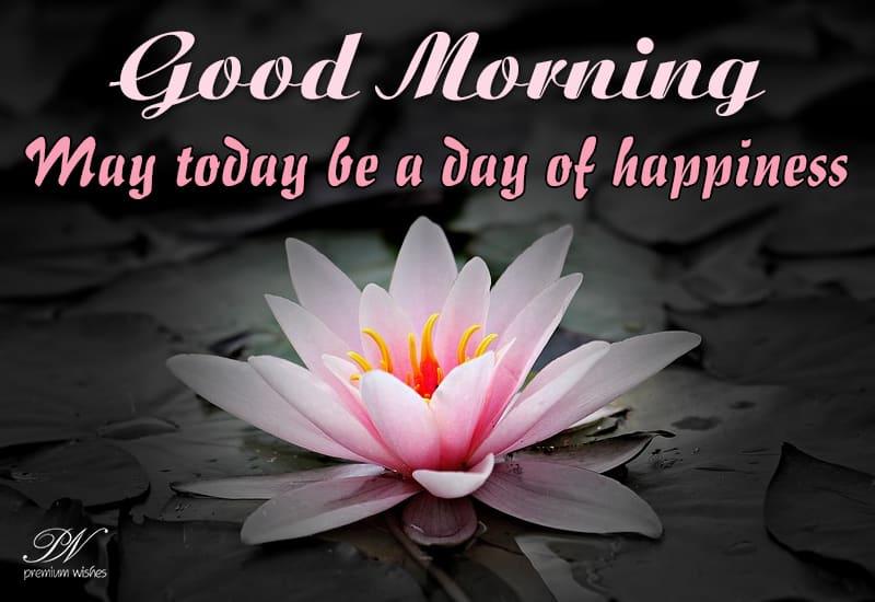 good morning may today
