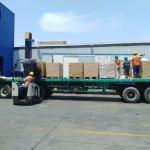 COVID-19: San Fernando colabora con 21 mil cajas de alimentos con aporte proteico para poblaciones vulnerables