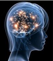 Active_brain