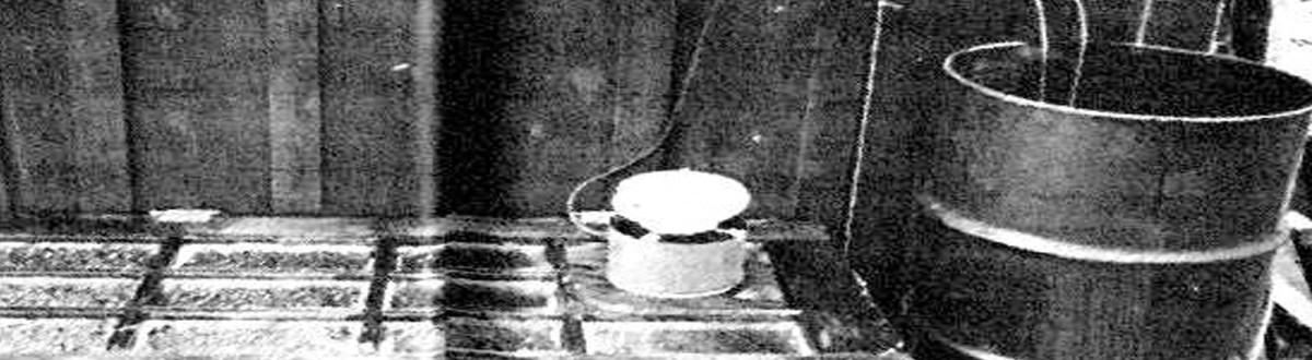 RAISING CATFISH IN A BARREL