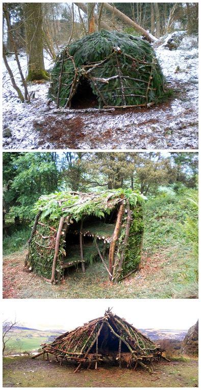photo2-homesteadsurvival-com_
