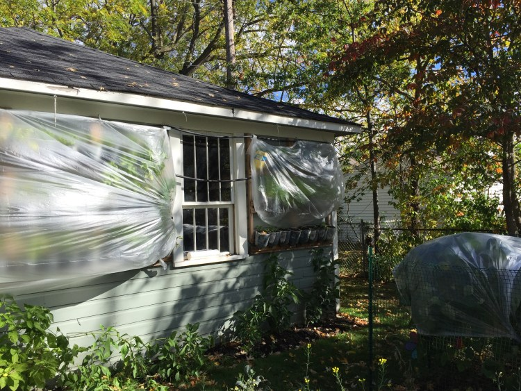 Make Your Own Hillbilly Garden Prepper Universe