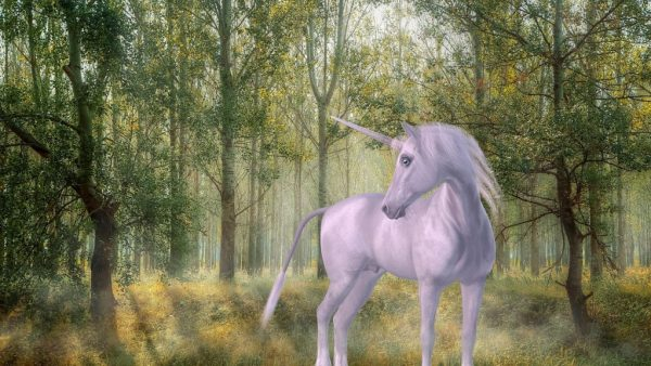 If I were a unicorn, I would not exist in real life.