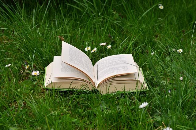 book-2224934_640