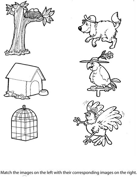 Animals And Their Homes Worksheets For Kindergarten