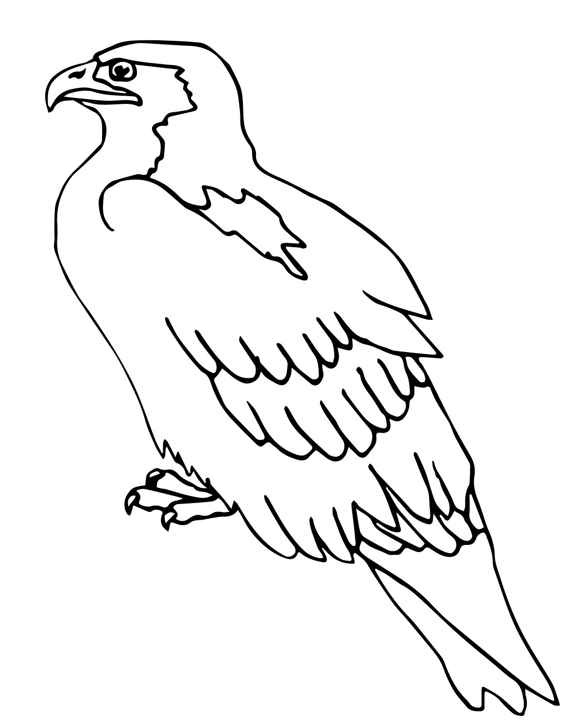 Bird Coloring Pages Perched Falcon