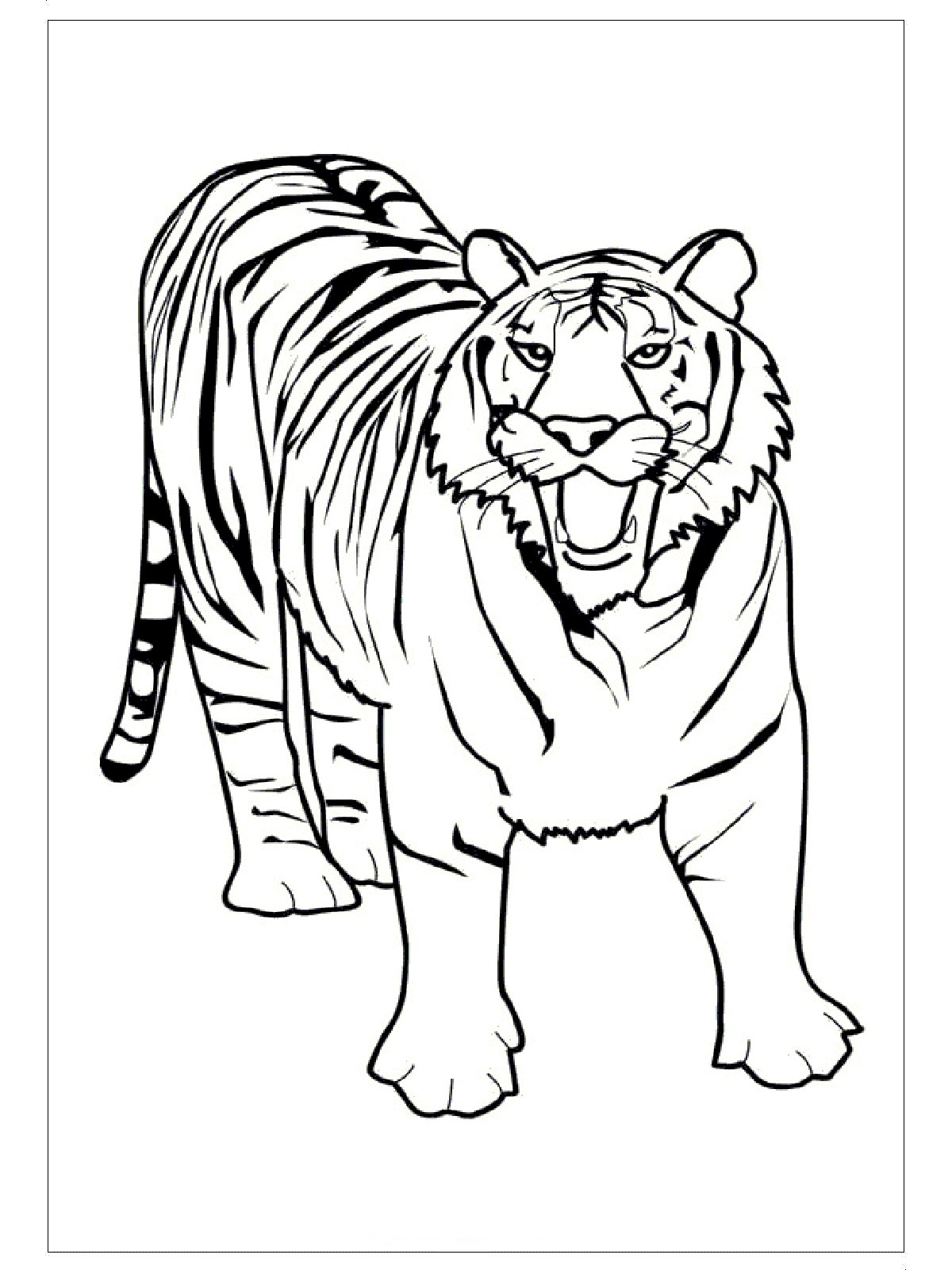 Free Tiger Coloring Pages Ideas For Preschool