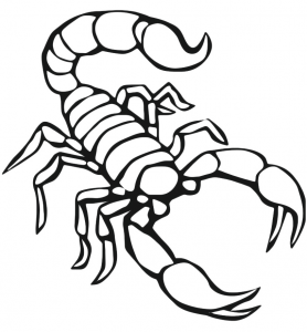 free-animals-scorpion-printable-coloring-pages-for