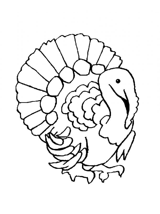 free-animals-turkey-coloring-pages-for-preschool