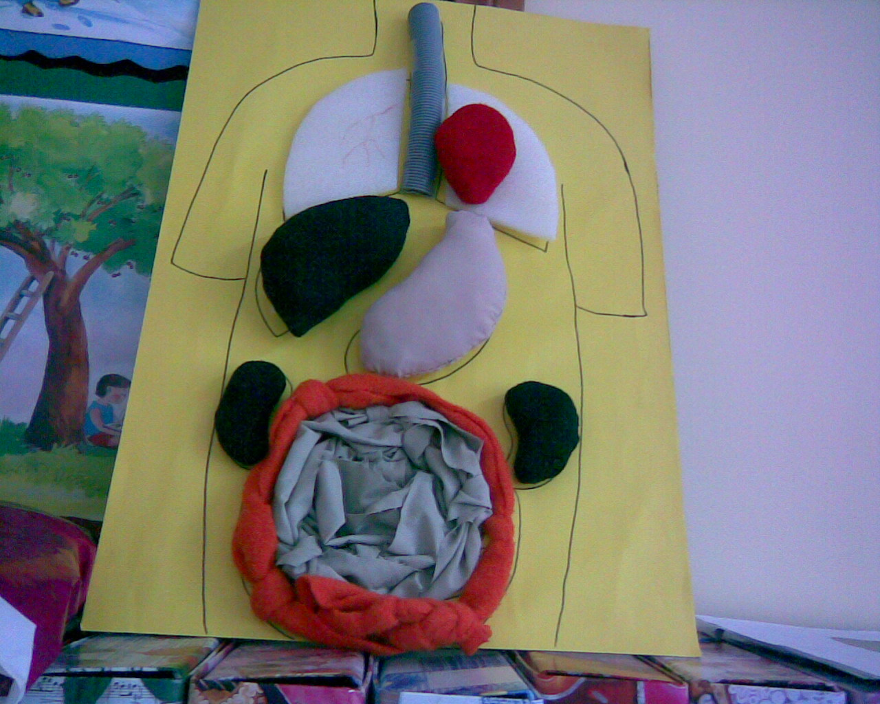 Human Body Crafts Idea For Kindergarten And Homeschool