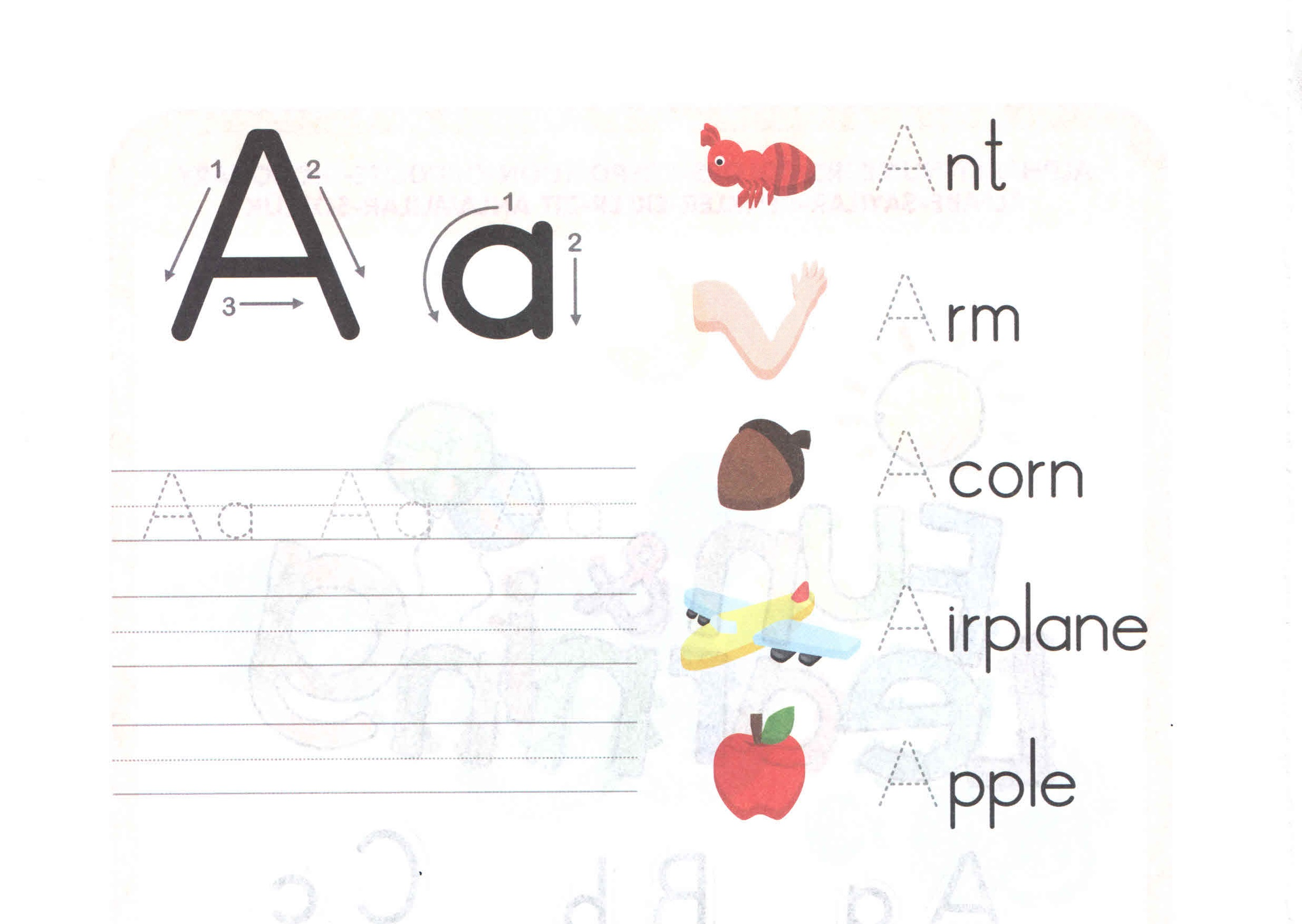 Alphabet Capital And Small Letter A A Worksheet For Kids
