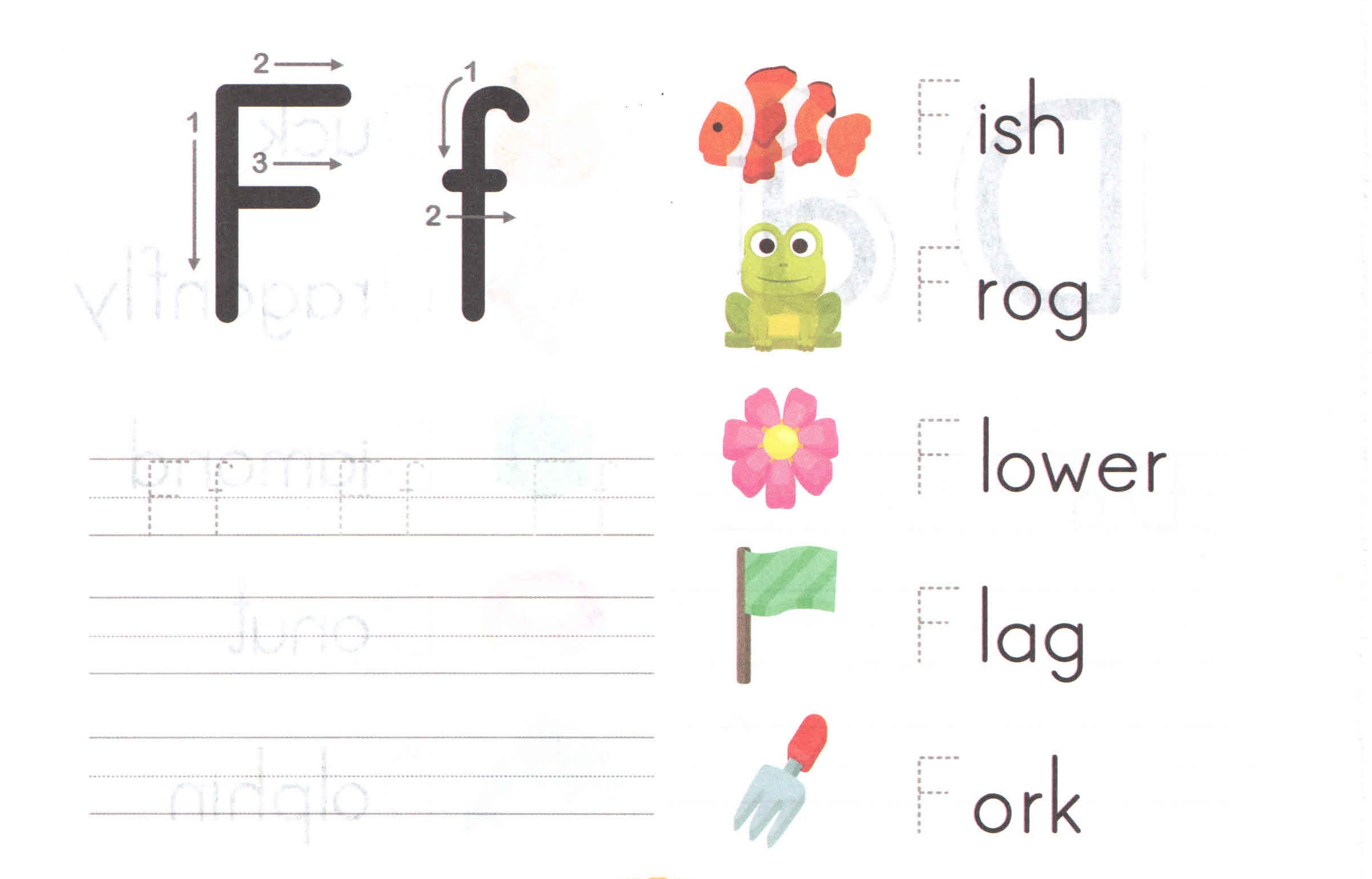 Alphabet Capital And Small Letter F F Worksheet For Kids
