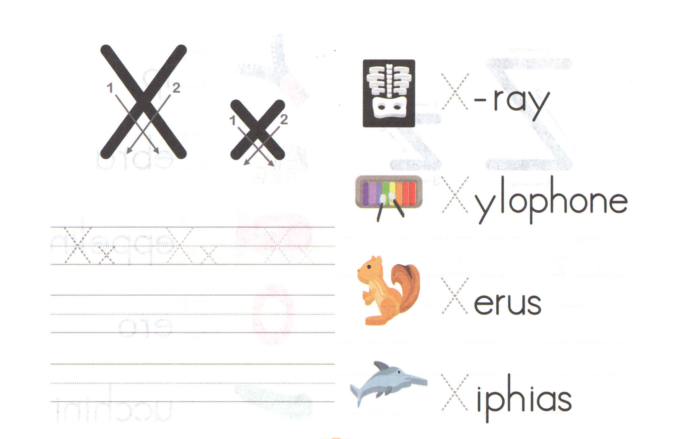 Alphabet Capital And Small Letter X X Worksheet For Kids