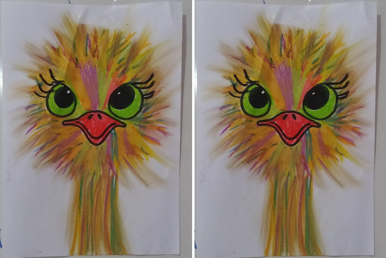 How To Make Ostrich Art Activity For Kids