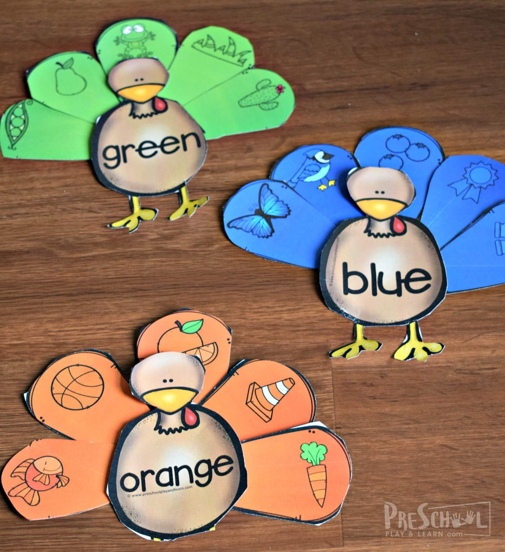Sorting Turkey Feathers Colors Activity