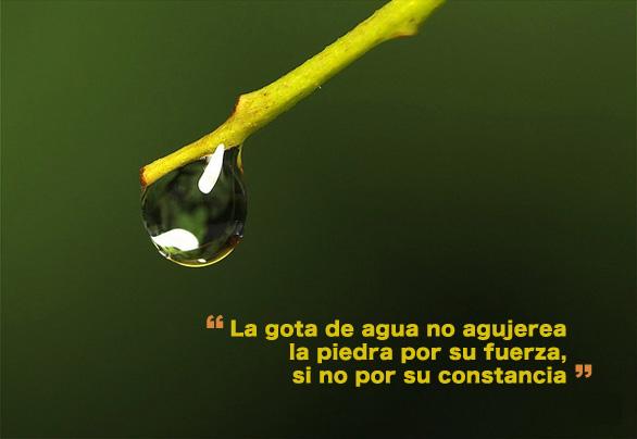 La gota de agua no agujerea la piedra por su fuerza, si no por su constancia