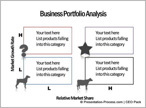 Portfolio Analysis CEO Pack PowerPoint