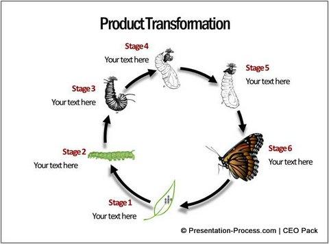 3 Unique Cycle Diagram ideas