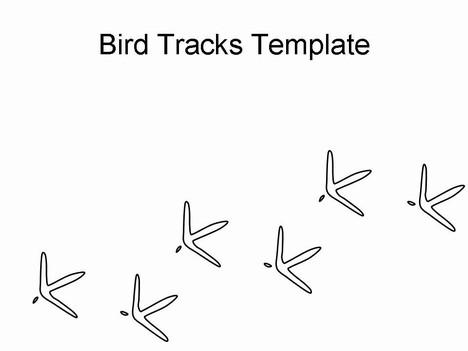 Bird Tracks Template