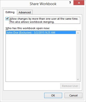 allow changes by more than one user makes it a multi-user excel document like a database