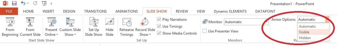 slideshow automatic pointer options