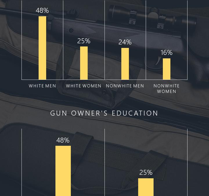 Gun Ownership Infographic – Display Data Visually