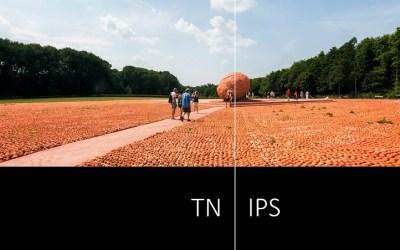 TN Panel vs IPS: a Comparison