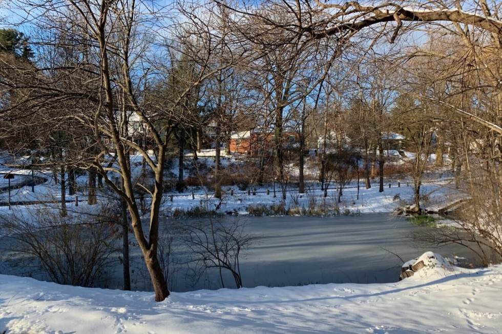 A small pond, ringed by snow and trees, is partially iced over. In the distance, through the trees, you can make out the houses of the neighborhood. To the left, a path curves down a slope and parallels the edge of the pond.