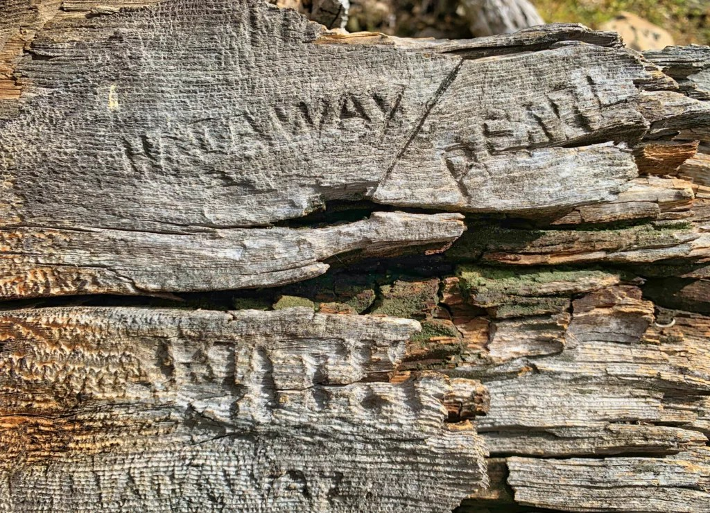 Names Etched in Cabins