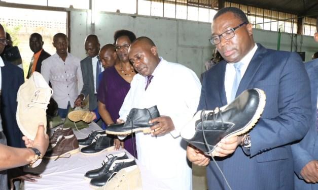 Le Deuxième Vice-Président de la République visite les industries AFRITAN et  SINOBU Tannery