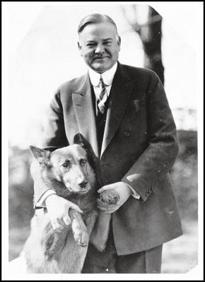 Hebert Hoover's Dog, King Tut