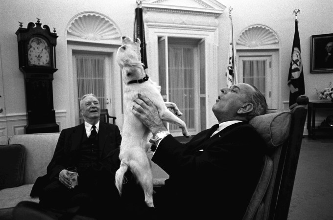"President Johnson's Famous ""Singing"" Dog, Yuki"