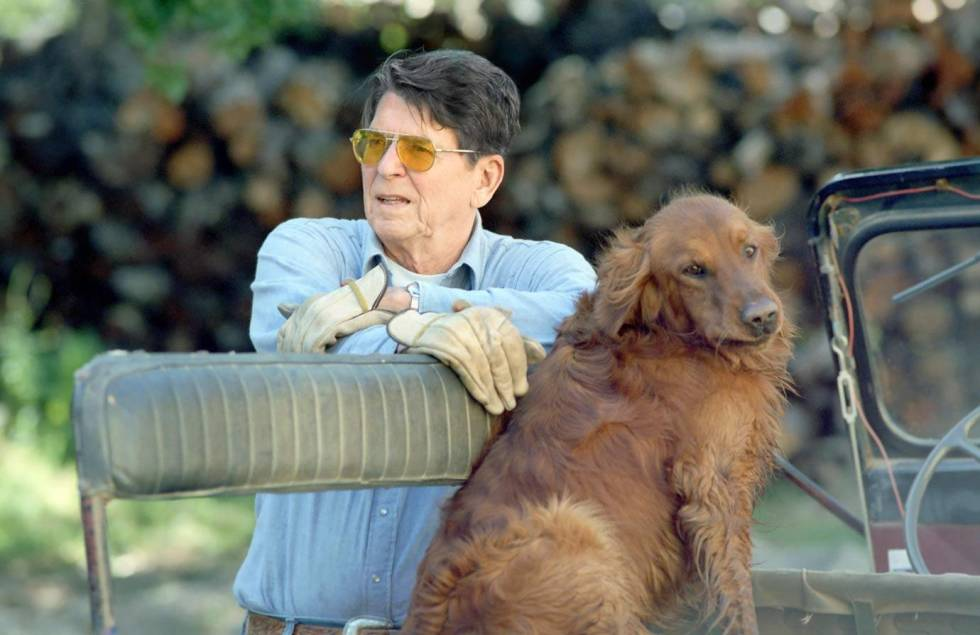 Ronald Reagan's Golden Retriever, Victory