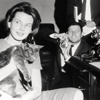 JFK's Cat, Tom Kitten