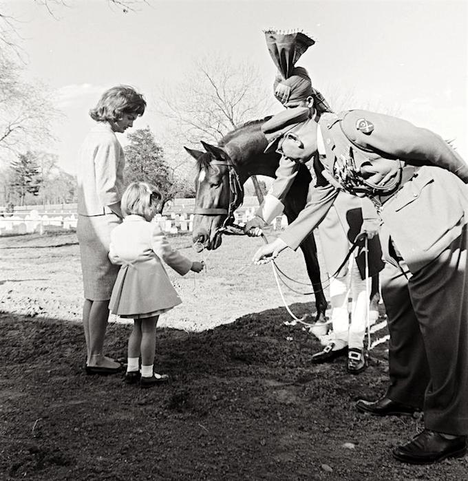 Jackie Kennedy's Horse, Sardar