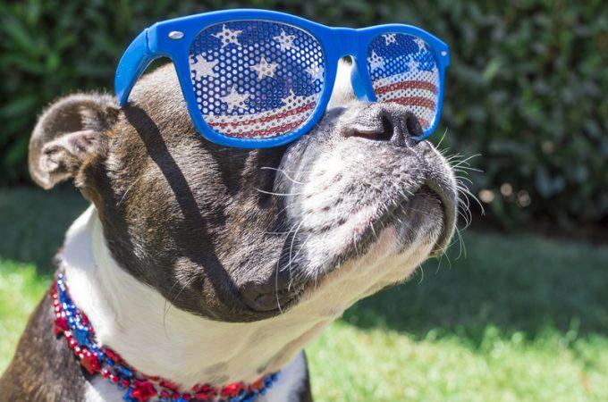 Presidential Pet Trivia – Week of March 16, 2020
