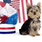 Presidential Pet Trivia – Week of February 20, 2017