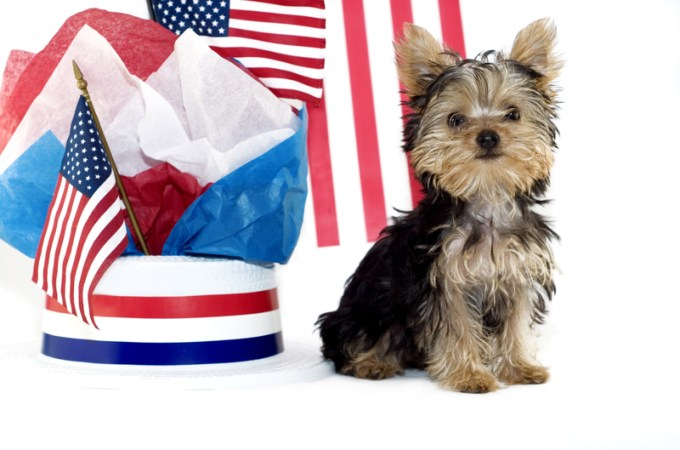 Presidential Pet Trivia – Week of September 21, 2020